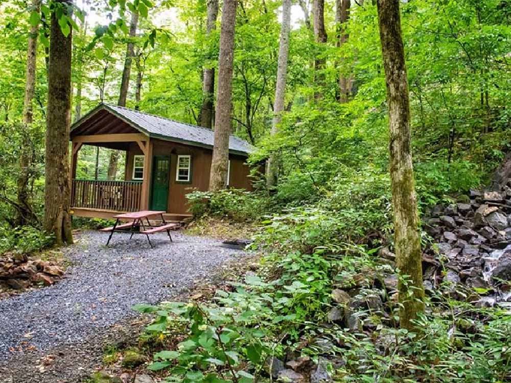 A cabin in the woods at MOONSHINE CREEK CAMPGROUND