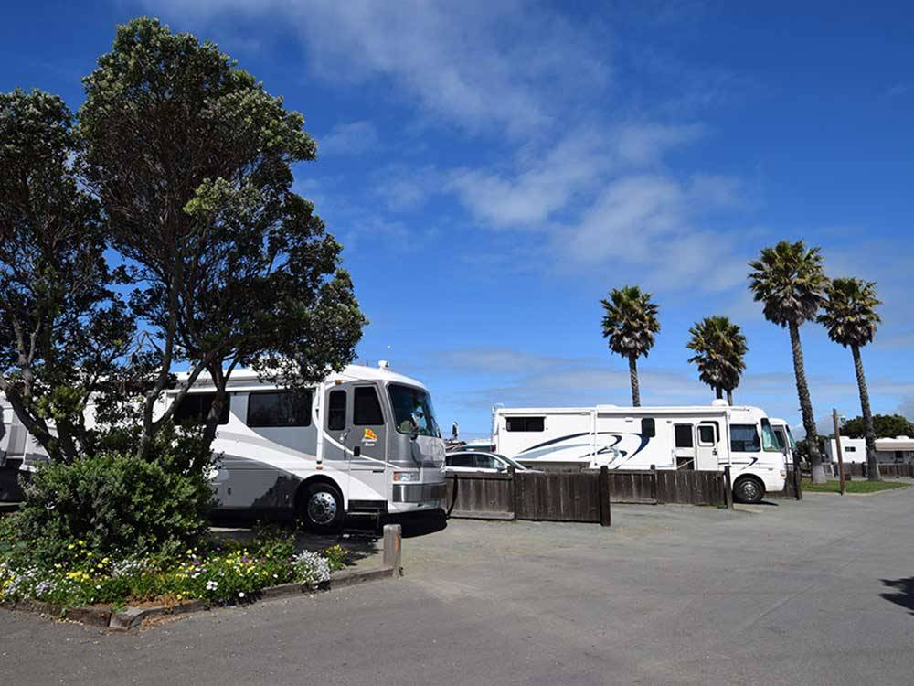 Morro Dunes Rv Park Morro Bay Ca Rv Parks And