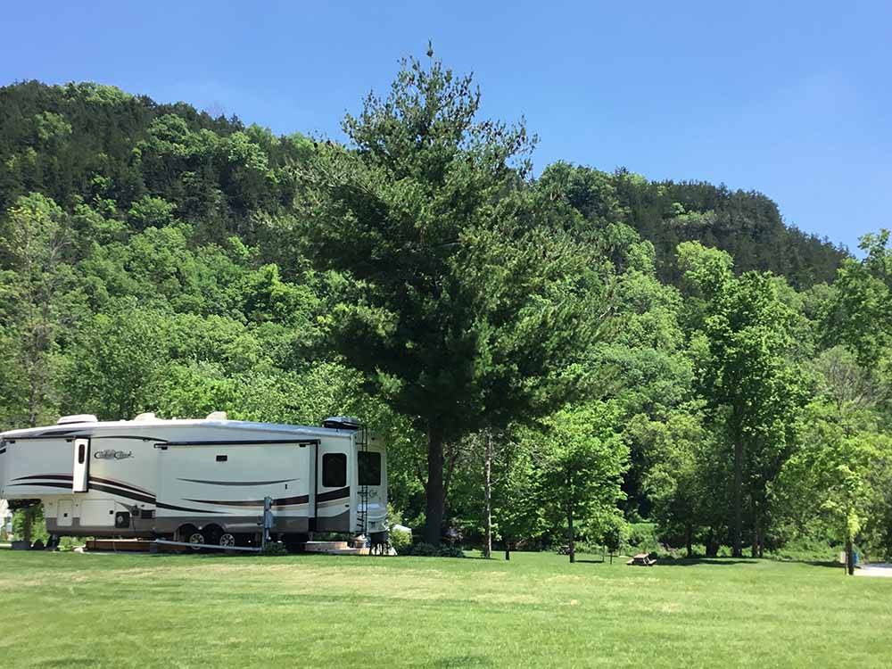 A green field with trees in the background at EAGLE CLIFF CAMPGROUND  LODGING