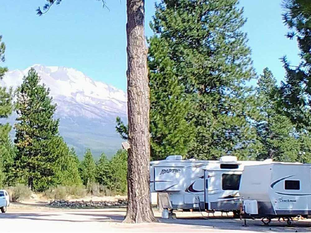 Trailers parked among trees with distant mountain at FRIENDLY RV PARK