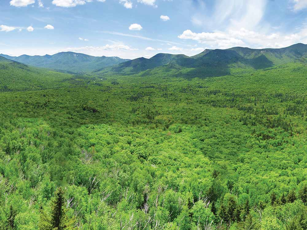 A view of the tree covered mountians at WHITE MOUNTAINS ATTRACTIONS ASSOC