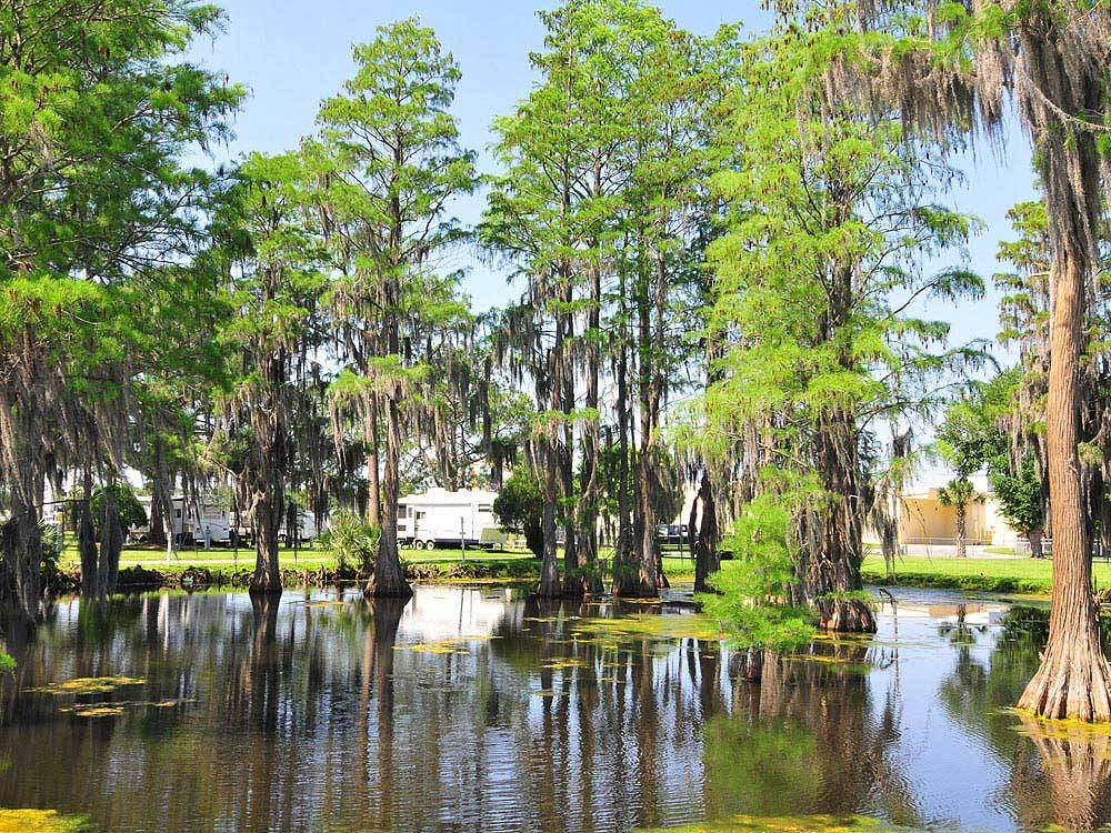 winter garden rv resort at winter garden fl - Winter Garden Rv Resort