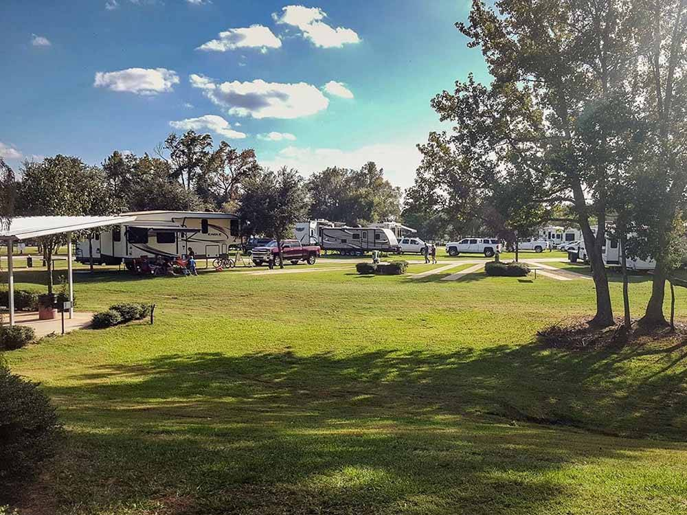 A grassy area with RV sites at BUSHMANS RV PARK
