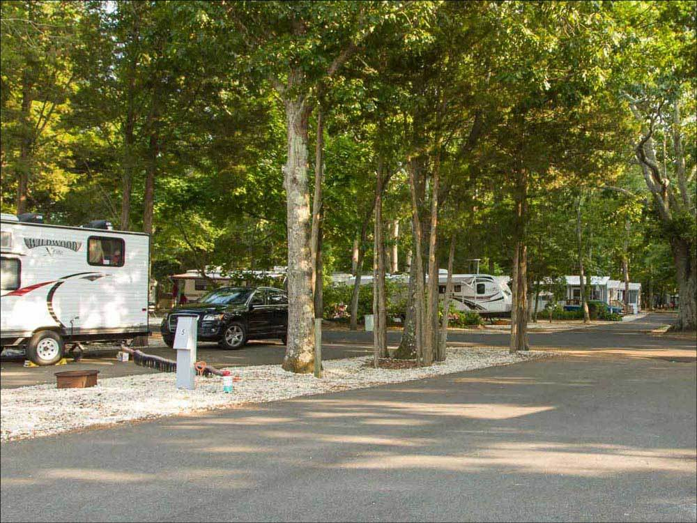 Driftwood Rv Resort Campground Clermont Campgrounds