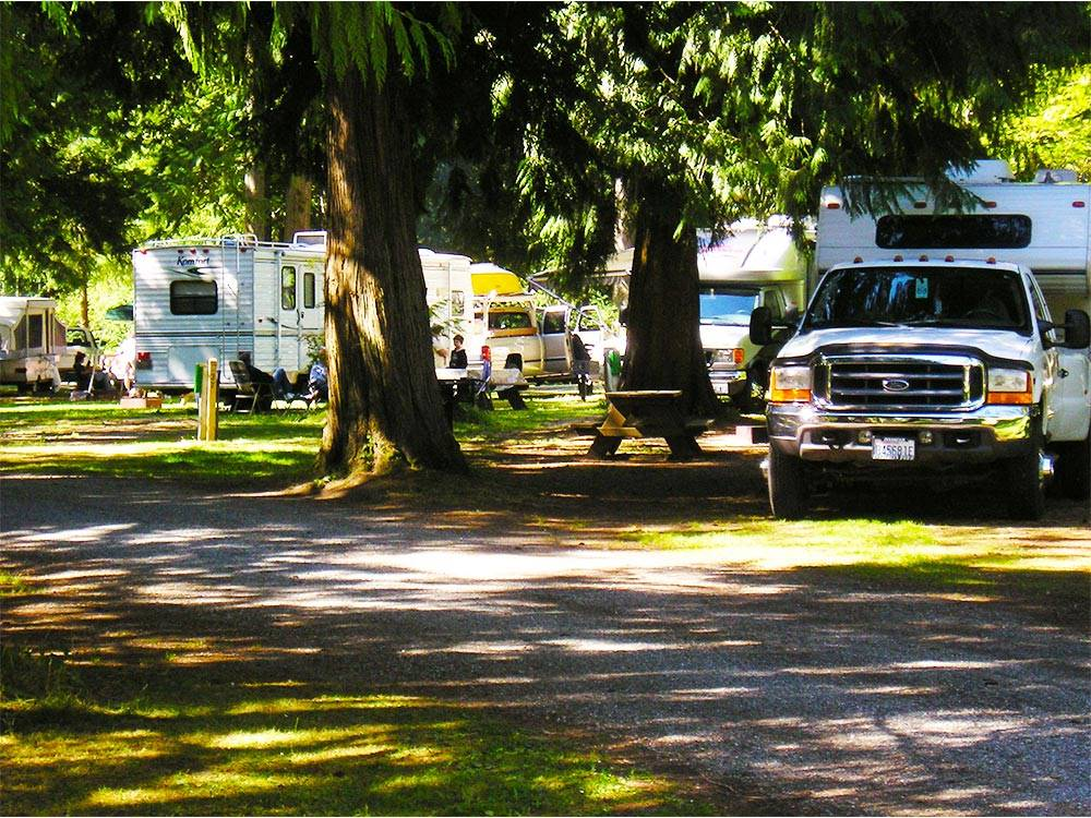 RVs and campers at GRANDY CREEK RV CAMPGROUND KOA