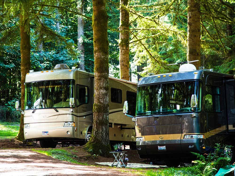 Two RVs parked in the woods at PARADISE THOUSAND TRAILS RESORT