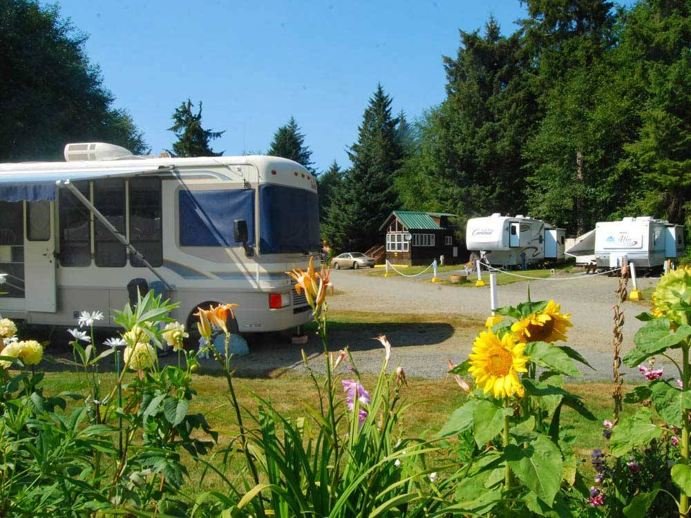 RVs and trailers at campgrounds at SEASIDE RV RESORT