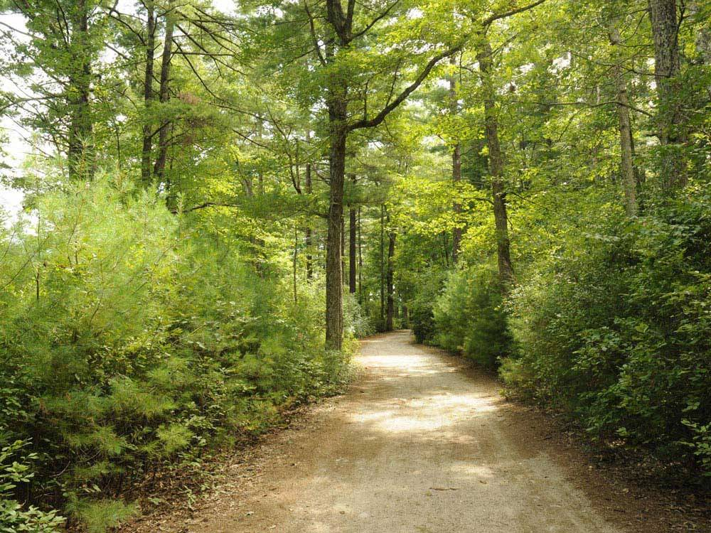 Gateway To Cape Cod Rv Campground Rochester Campgrounds