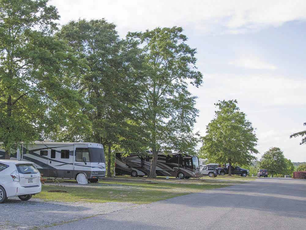 RVs parked at campground at SCENIC MOUNTAIN RV PARK  CAMPGROUND