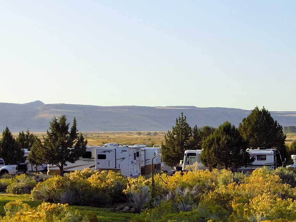 RVs parked at campground at STEENS MOUNTAIN WILDERNESS RESORT