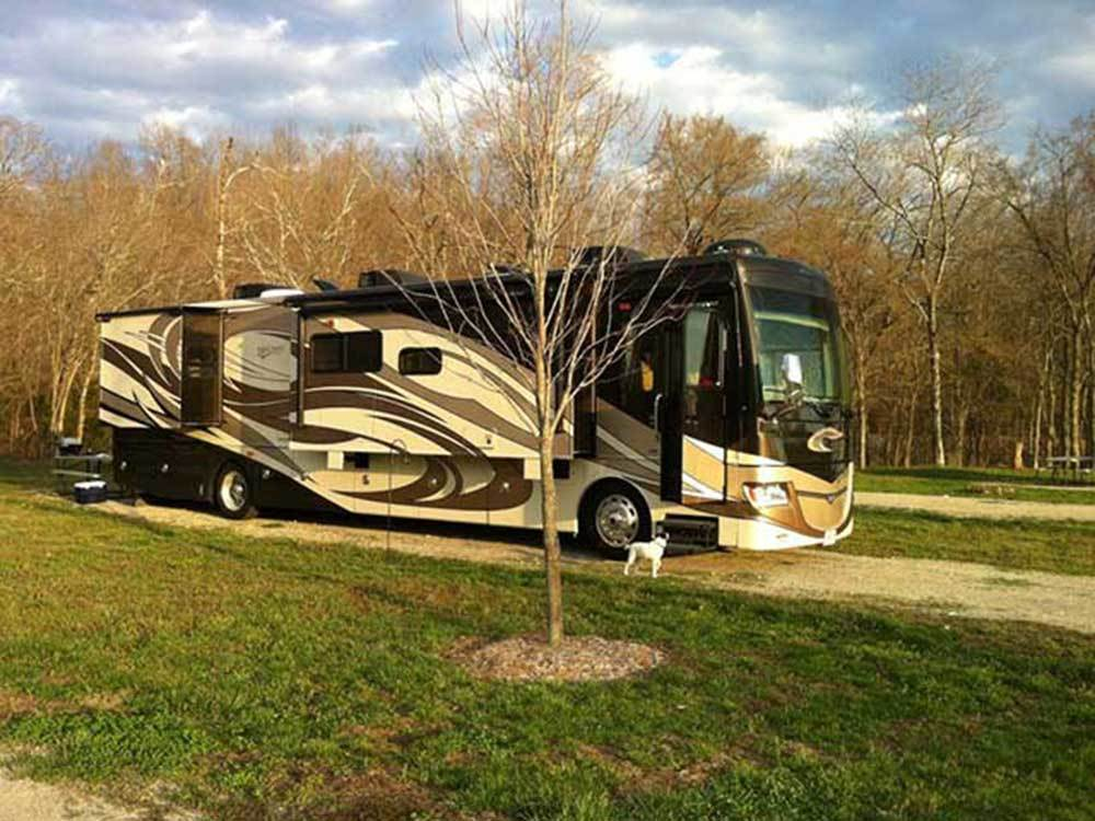 RV parked at campsite at BIG CREEK RV PARK