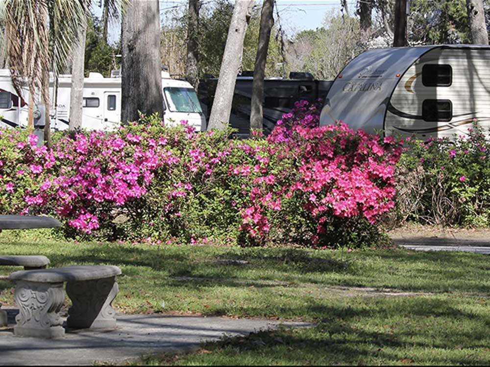 RVs and trailers at campgrounds at BILTMORE RV PARK