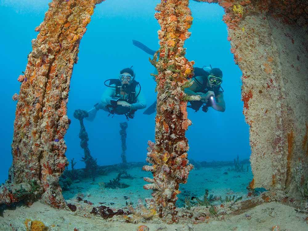 Two people scuba diving at BIG PINE KEY  FLORIDAS LOWER KEYS