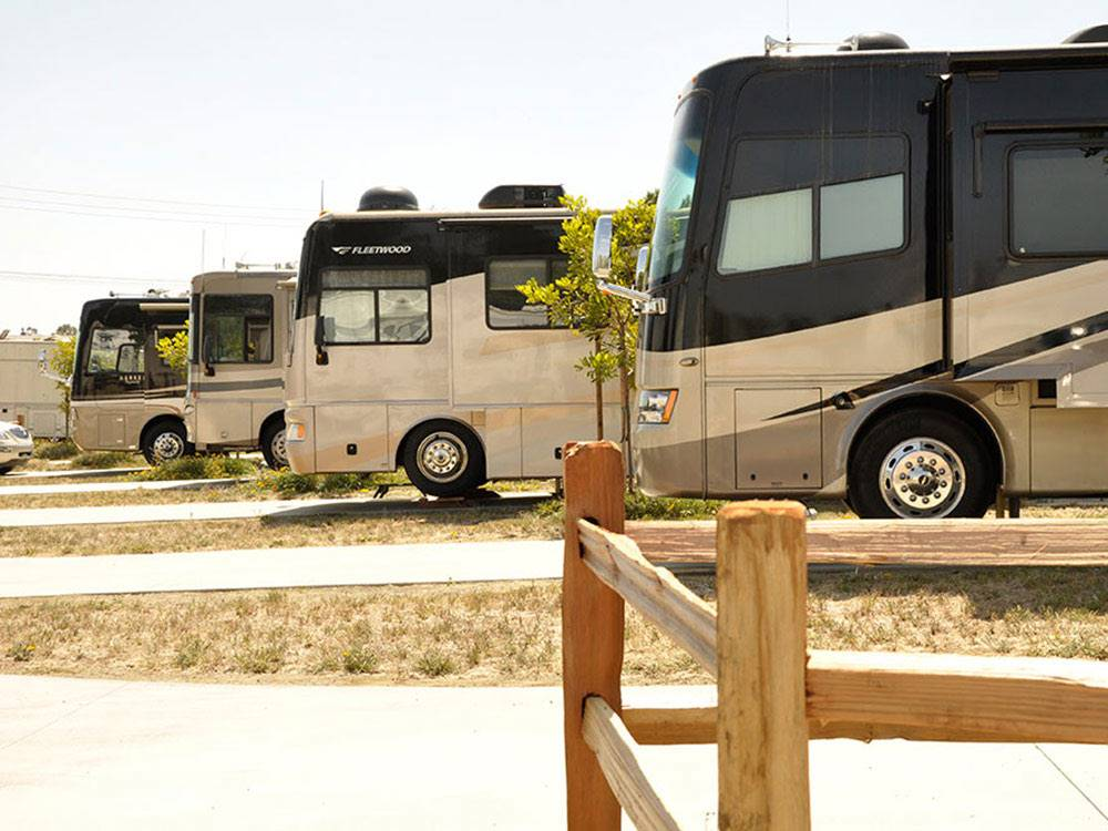 Front of RVs at OLIVE AVE RV RESORT