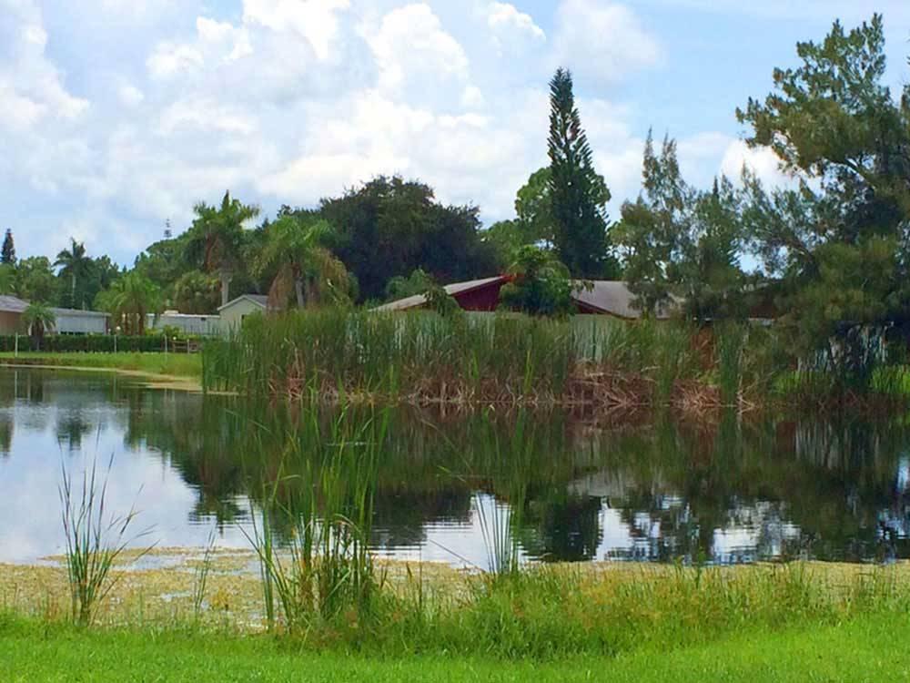 Gulf Coast Camping Resort Bonita Springs Campgrounds