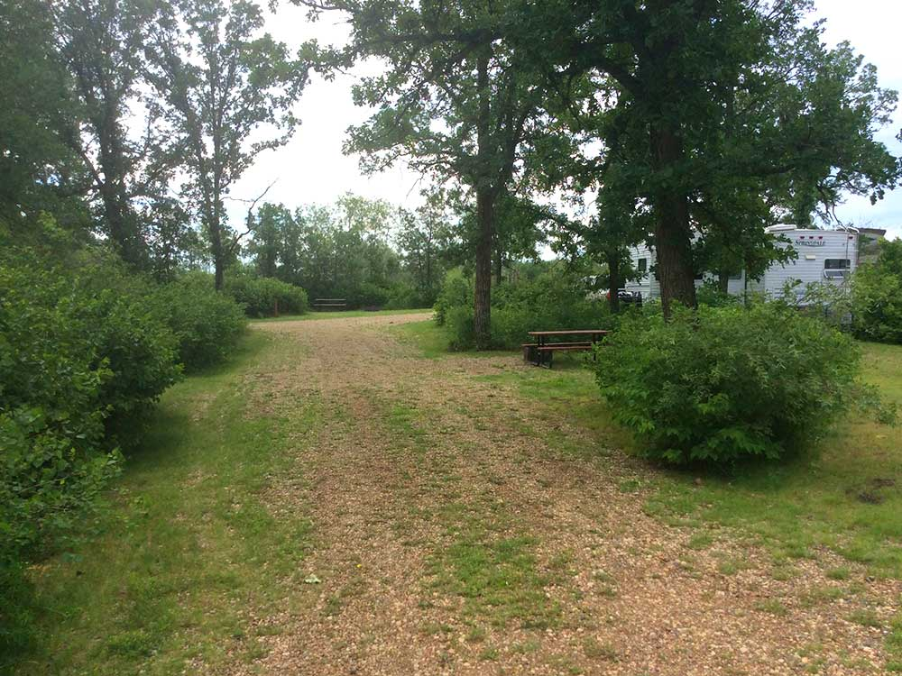 Vacant RV site with a picnic table at FOREST HILLS CABIN RENTALS  RV PARK