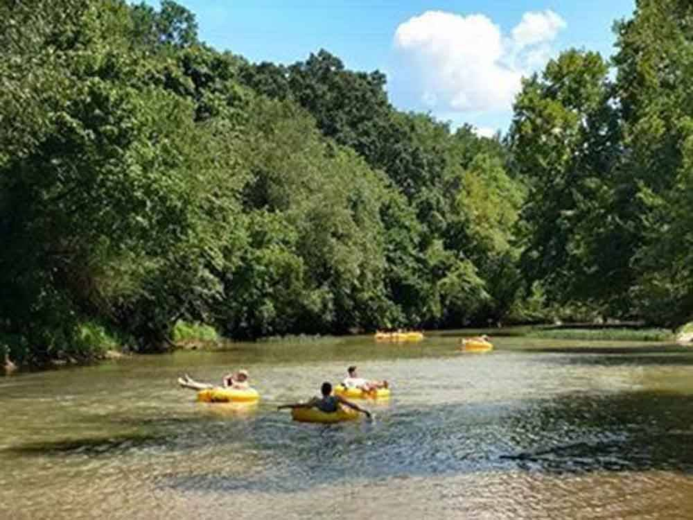 People floating on yellow inner tubes at BIG WILLS CREEK CAMPGROUND  TUBING