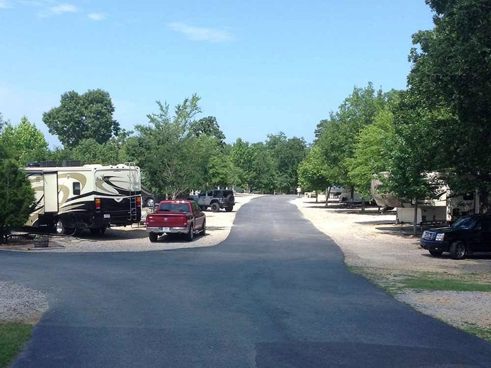 Tree lined sites at CLOUD NINE RV PARK