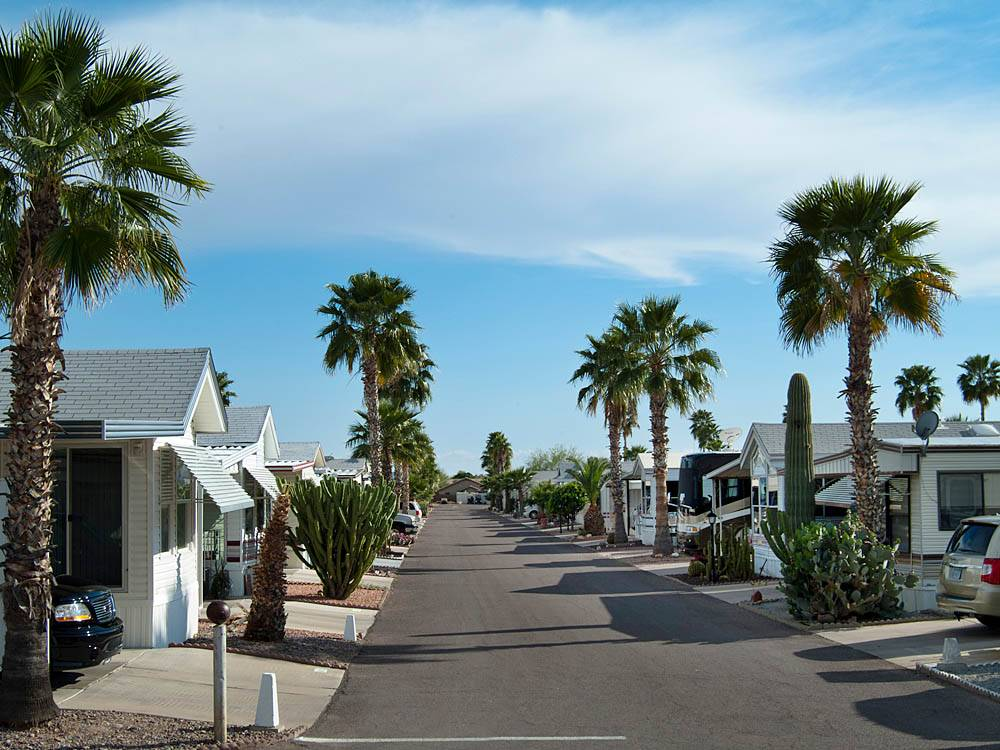 Mobile homes and RVs at GOLDEN SUN RV RESORT