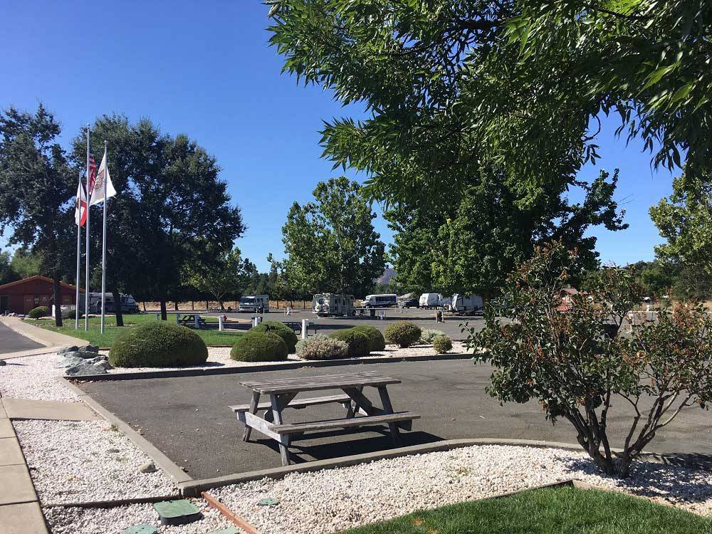 View of the park with paved sites at KONOCTI VISTA RV PARK