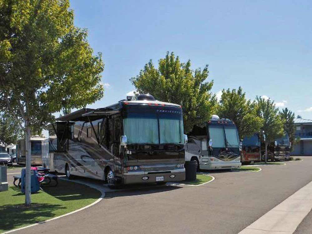 RVs parked in a row at SPARKS MARINA RV PARK