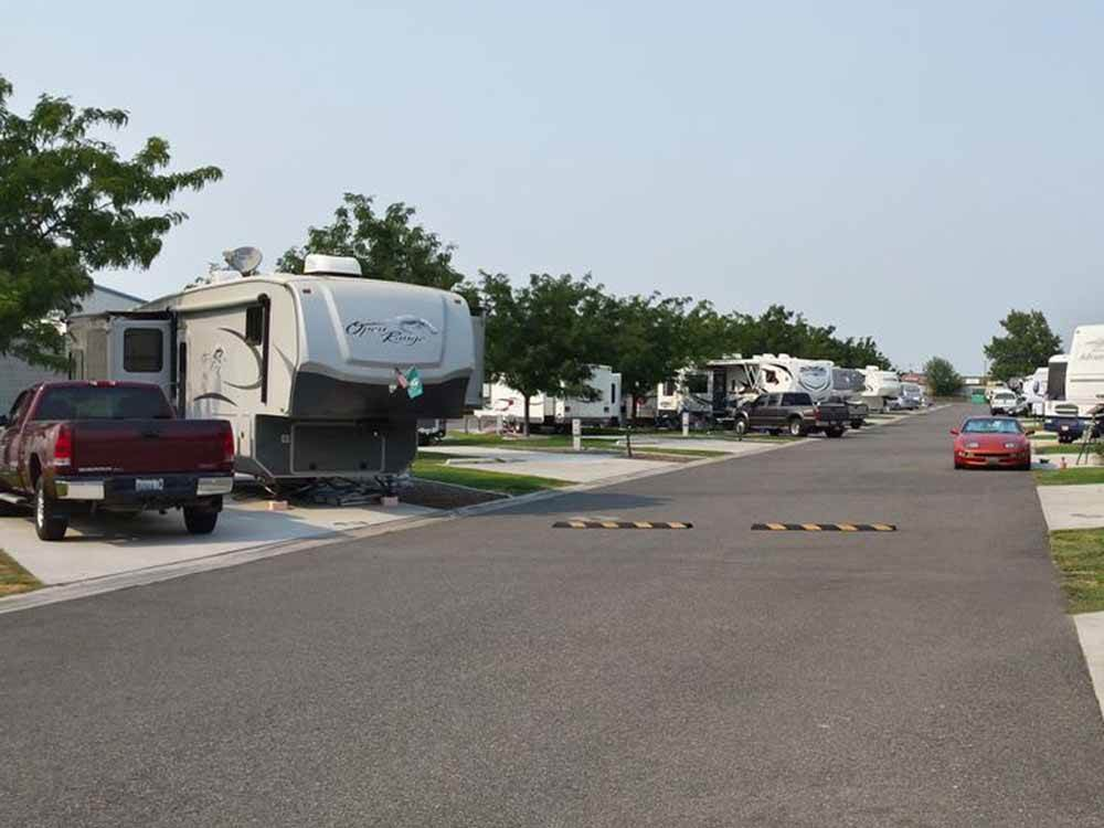 A row of RV sites with trees at FRANKLIN COUNTY RV PARK
