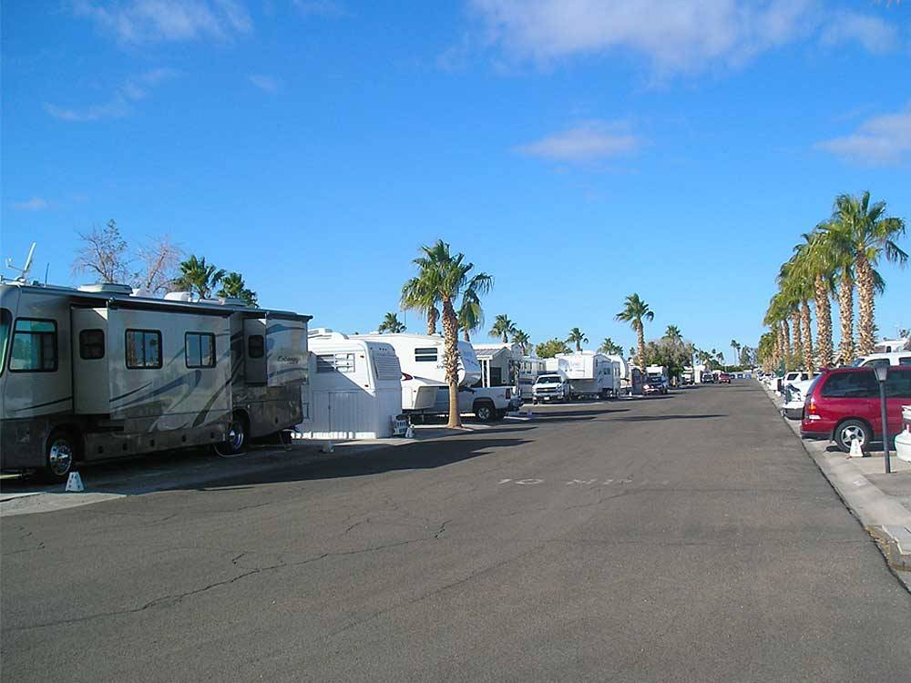 MESA VERDE RV RESORT at YUMA AZ