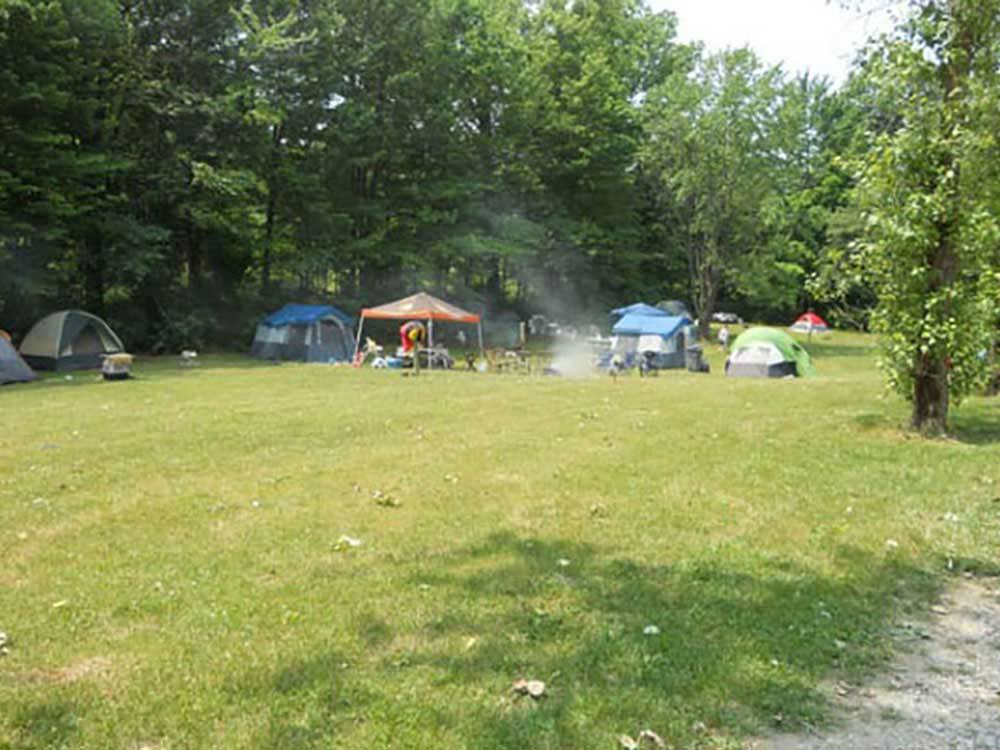American wilderness campground grafton oh rv parks for Nearby campgrounds with cabins