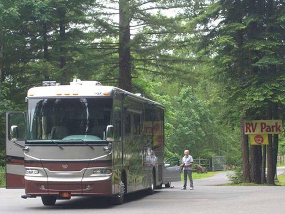 RV parked at campsite at ANCIENT REDWOODS RV PARK