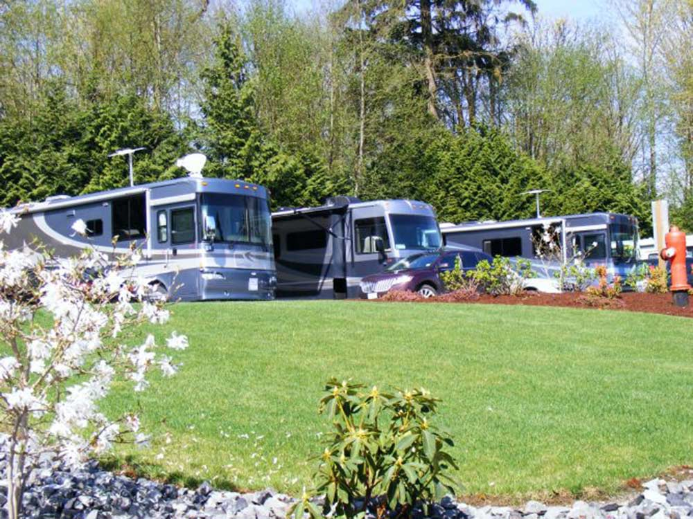 RVs camping at EAGLE WIND RV PARK