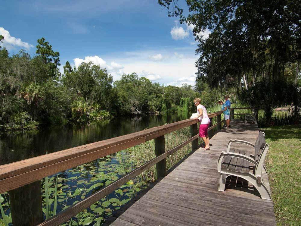 SHELL CREEK RV RESORT at PUNTA GORDA FL