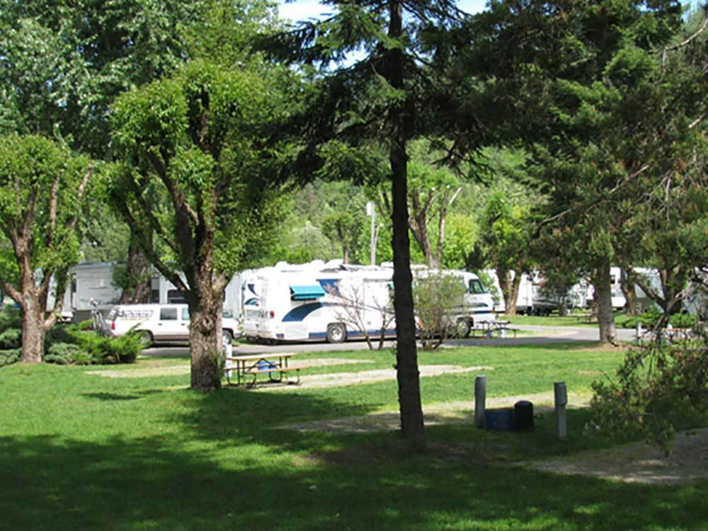 RVs and trailers at campground at BLUE ANCHOR RV PARK
