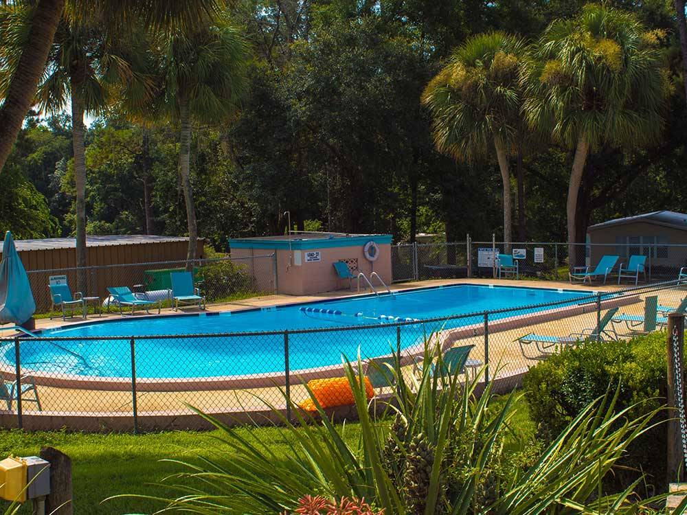 View of swimming pool with tropical landscaping at TRAVELERS CAMPGROUND