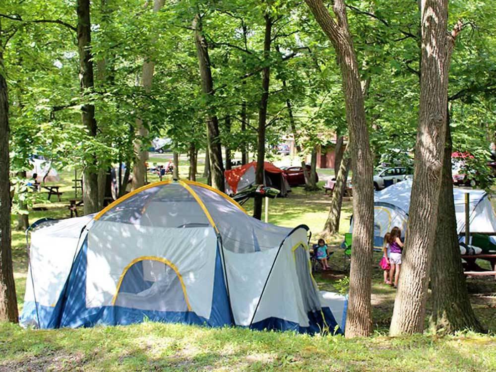 Yogi Bear's Jellystone Park Camp-Resort | Niagara Falls ...