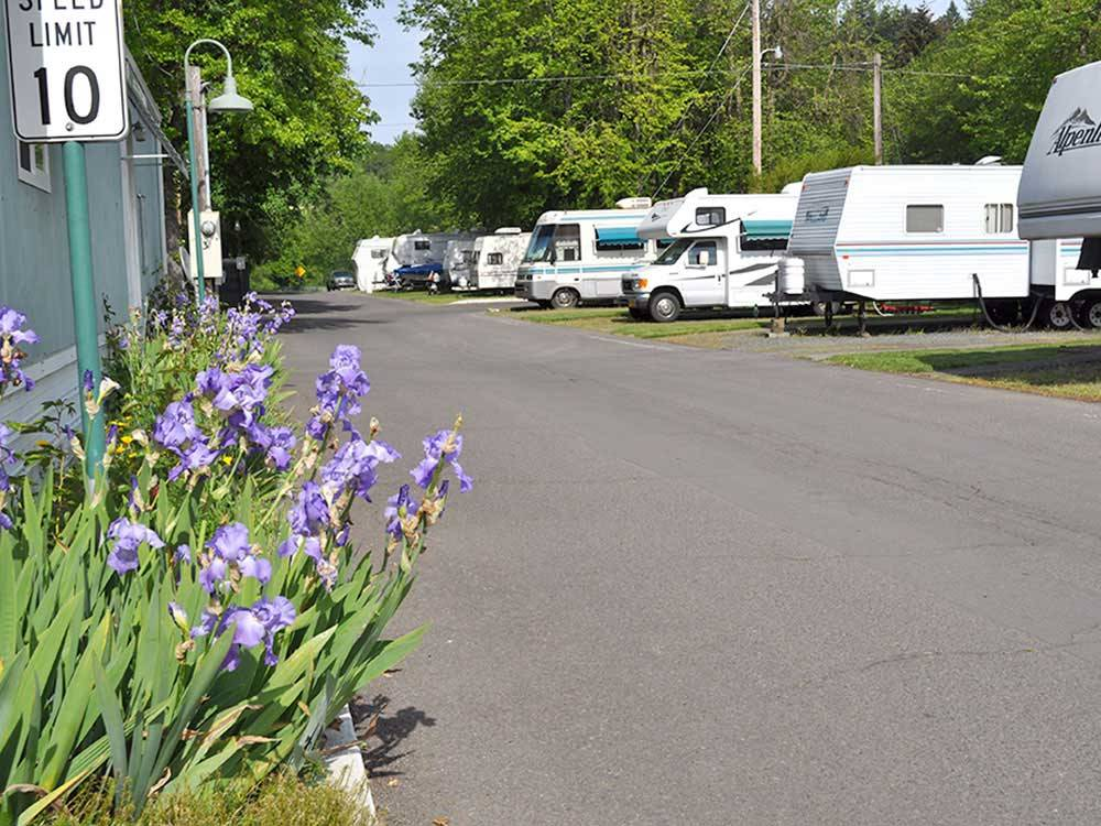 Road leading into campgrounds at SHAMROCK RV MHP VILLAGE