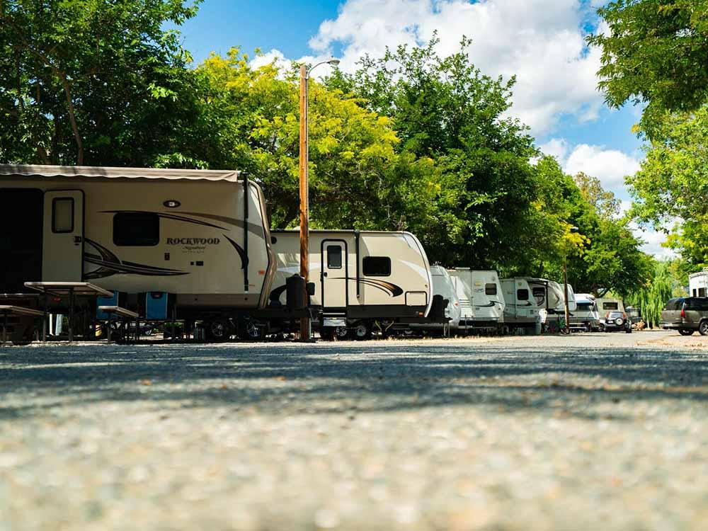 A row of full RV campsites at WAIIAKA RV PARK