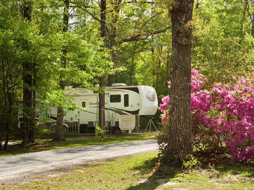 RV Parks in ocala, Florida | ocala, Florida Campgrounds