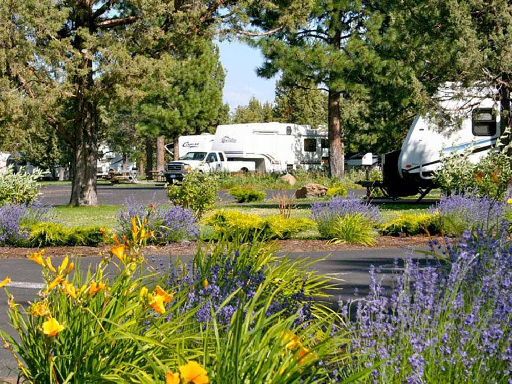 Trailers camping at BENDSISTERS GARDEN RV RESORT