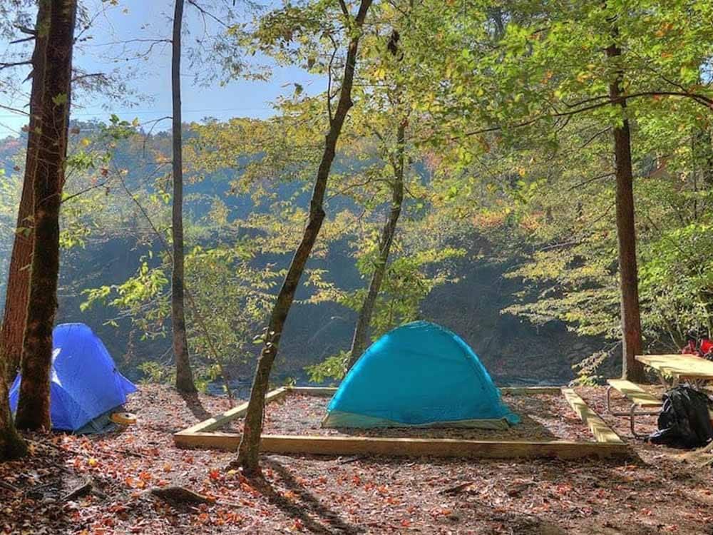 Greenbrier Campground Gatlinburg Tn Rv Parks And