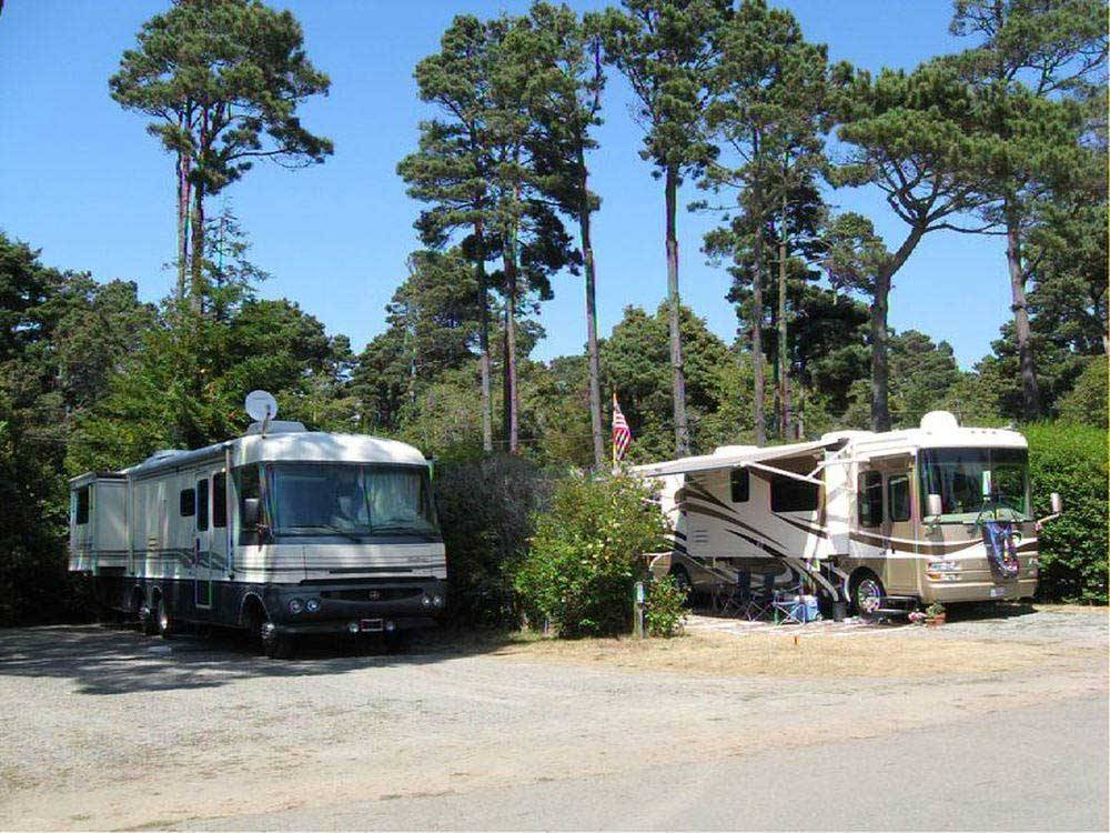 Pomo Rv Park Amp Campground Fort Bragg Ca Rv Parks And