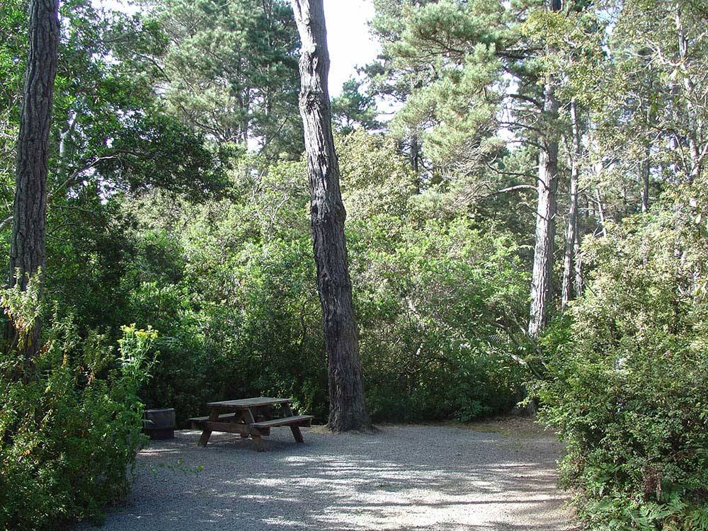 Pomo RV Park Campground - Fort Bragg campgrounds | Good ...