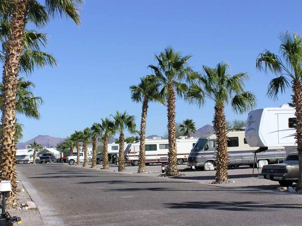 88 SHADES RV PARK at QUARTZSITE AZ