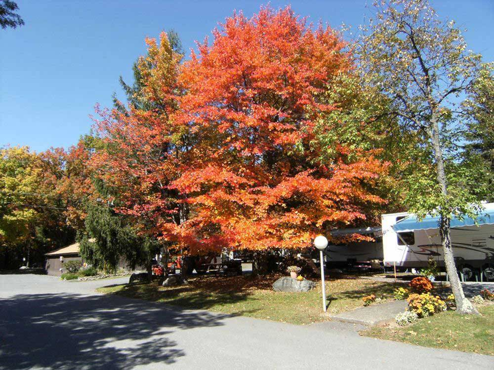 FOUR SEASONS CAMPGROUNDS at SCOTRUN PA