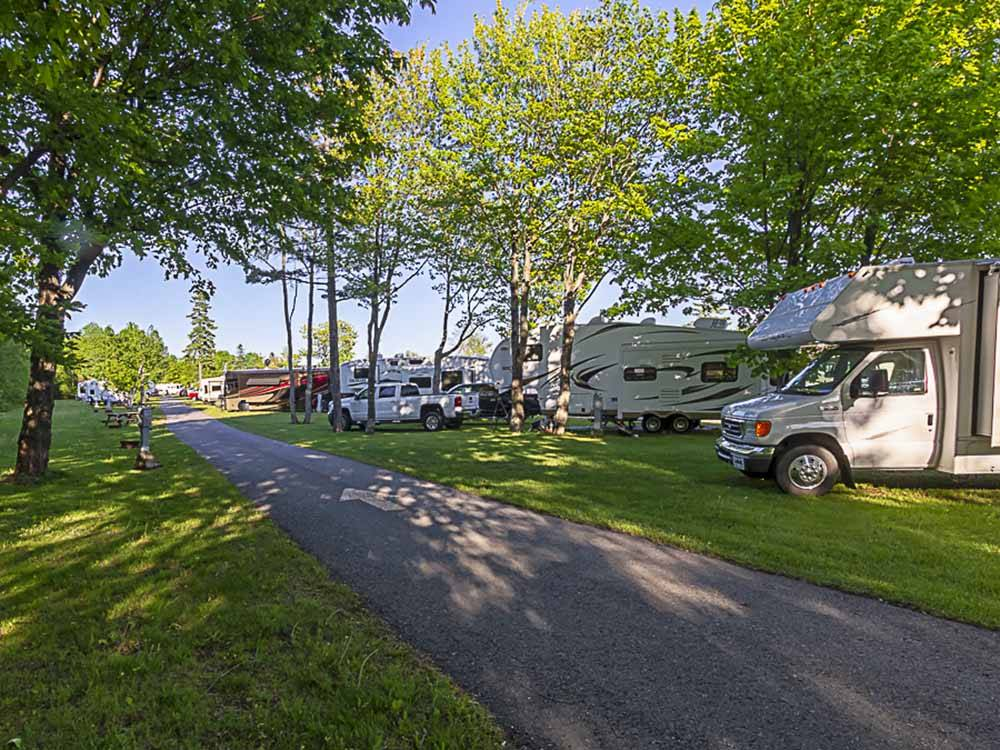 A shady road alongside of RV sites at CAMPING TRANSIT