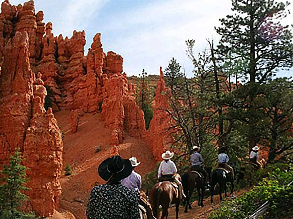 Man with a cowboy hat on a horse at BRYCE CANYON PINES STORE  CAMPGROUND  RV PARK