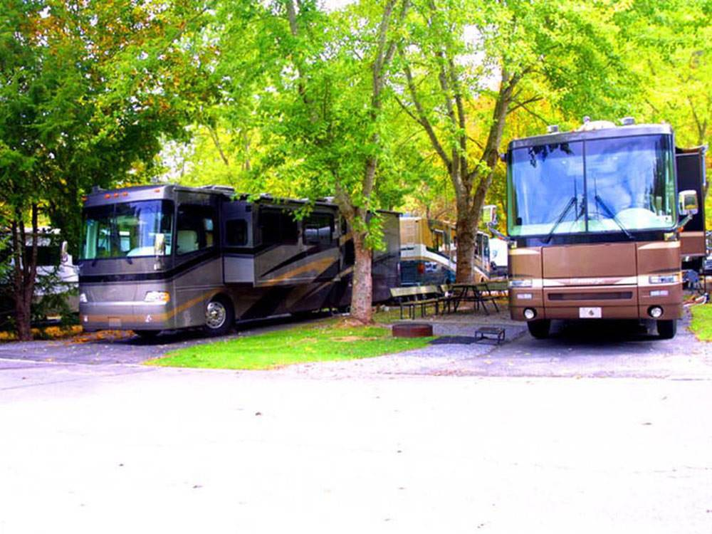 RVs camping at TWIN CREEK RV RESORT