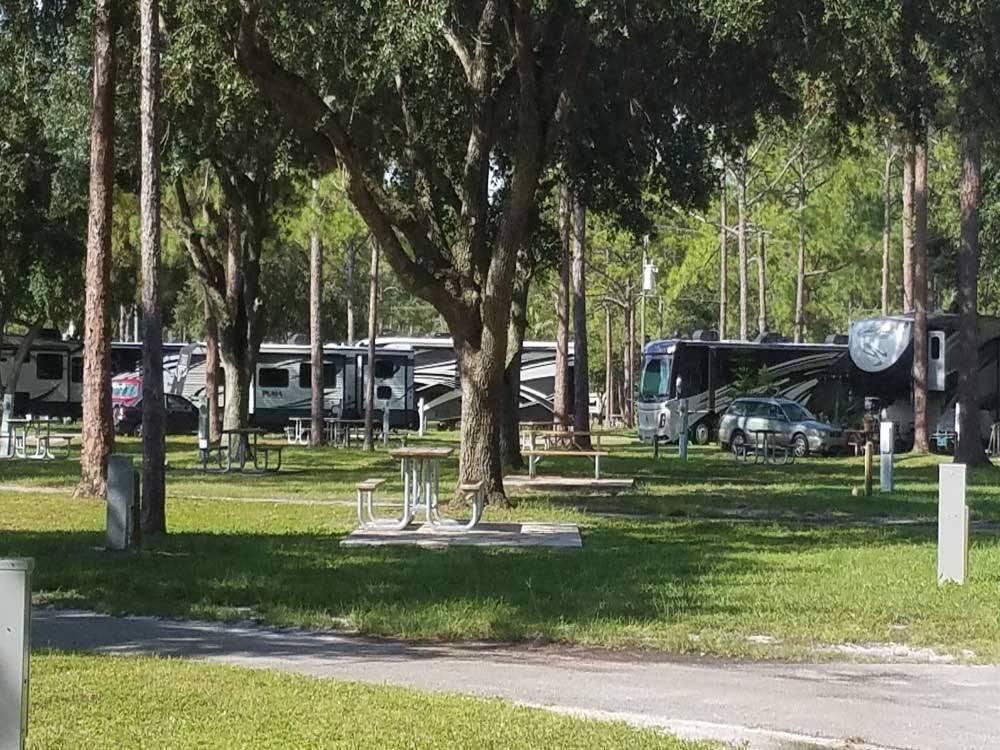 Lion Safari Camping West Palm Beach