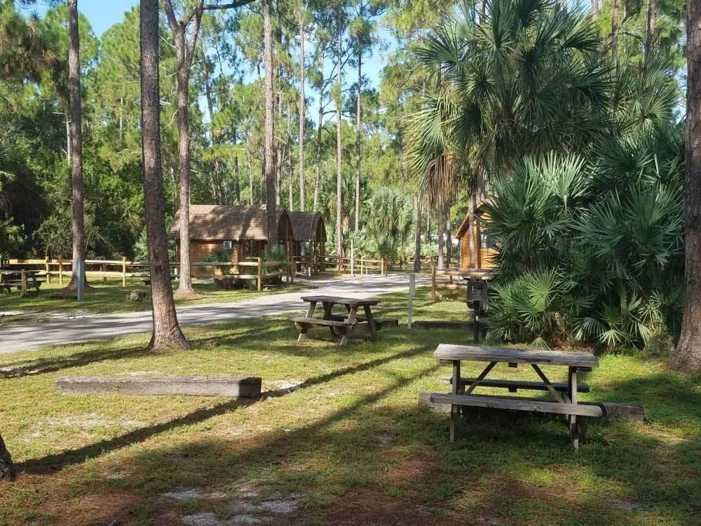 Lion Country Safari Koa West Palm Beach Campgrounds