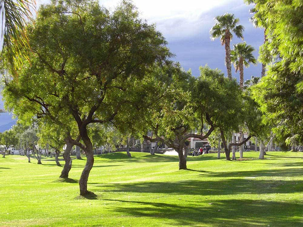 Outdoor Resort Palm Springs Cathedral City Campgrounds