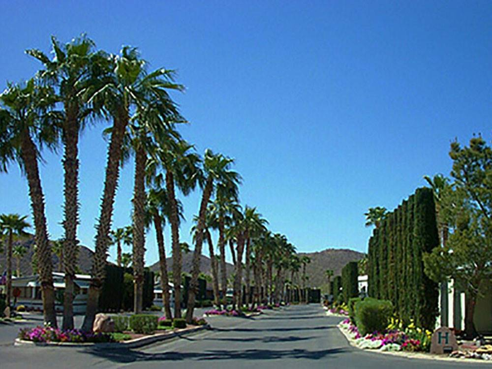 Rincon Country West Rv Resort Tucson Campgrounds Good